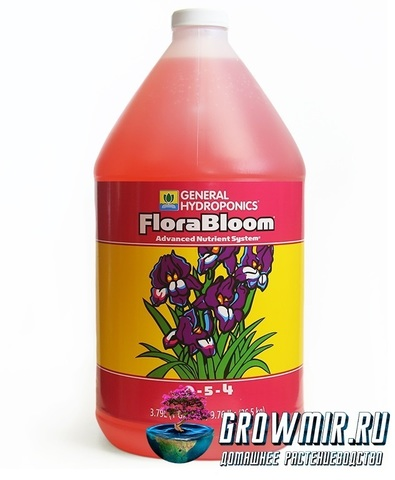 Original Flora Bloom GH 5L