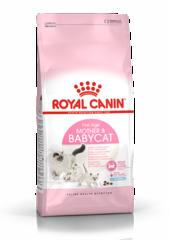 Корм для котят и беременных кошек, Royal Canin Mother&Babycat