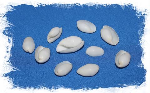 Ракушки Белый Бублес, уп. 250мл.