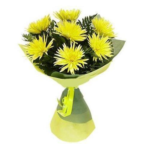 7 одноголовых хризантем с оформлением #1864