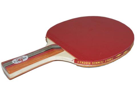 Ракетка для настольного тенниса 2 звезды + чехол :(2005):