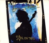 Ronnie Wood / Slide On This (CD)
