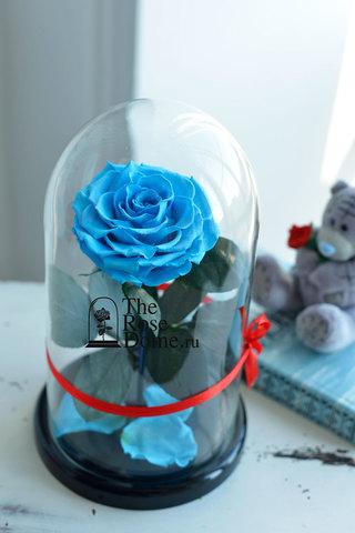 Роза Premium ХИТ Оптом Выс*Диам*Бутон (27*15*11см)Цвет голубая