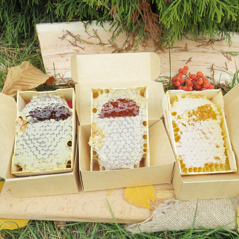 Сотовый мёд 2021 в минирамках 3 шт разного сорта