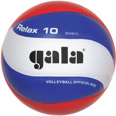 Волейбольный мяч RELAX