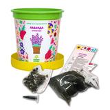 Набор для выращивания в горшочках Happy Plant Лаванда ароматная