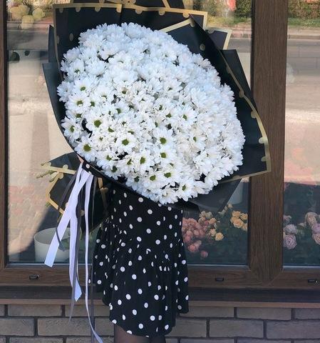 25 ромашковая хризантема #1739