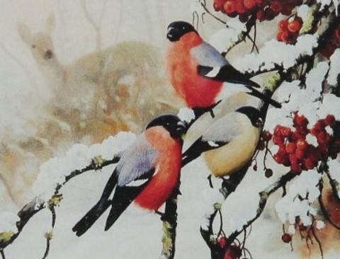 Картина по номерам 40х50 пара снегирей с синицей (арт. RA3309)