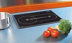Варочная панель Webasto Diesel Cooker X100