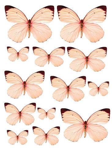 Печать на сахарной бумаге, Набор Бабочки 11