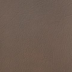 Искусственная кожа Denkart Padova plus (Денкарт Падова плюс) 13913