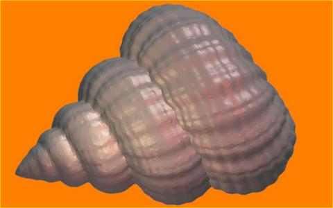 Ракушка. Форма для мыла пластиковая