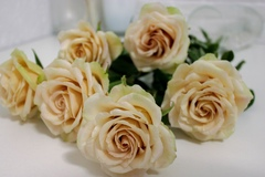Мастер класс по лепке полноразмерной розы