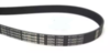 Ремень 1315 H8 Optibelt для стиральной машины Gorenje (Горенье) 1315 H8 1260 мм OPTIBELT - 587610, 151041 УНИВЕРСАЛ