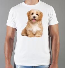 Футболка с принтом собаки (Собачки, Гаванский бишон) белая 0072