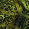 Пряжа YarnArt FLAMENKO 278 (Зеленый,салатовый)