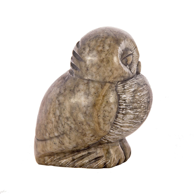 Спящая сова