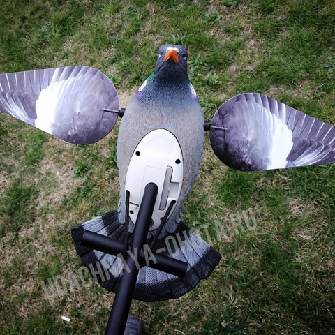 Чучело голубя-вяхиря с вращающимися крыльями Lucky HD Wood Pigeon