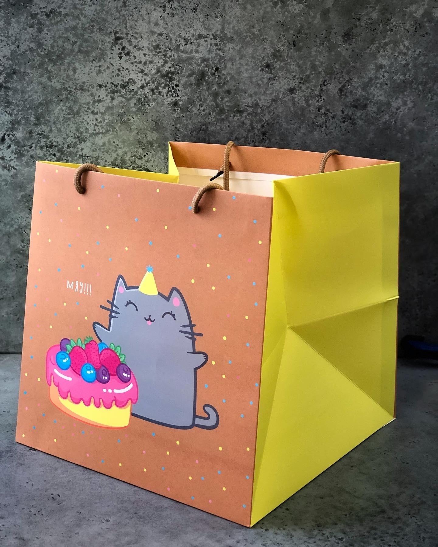 Пакет большой «Котик», 30х30х30 см