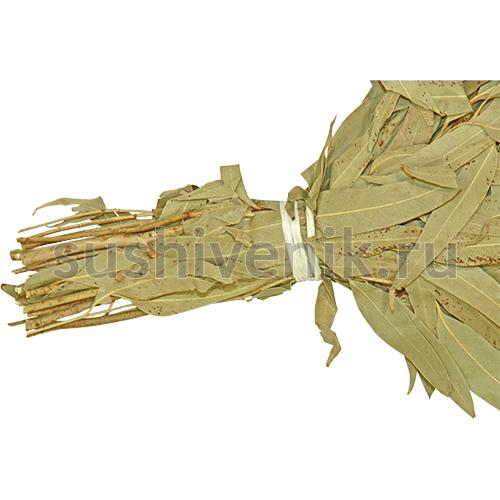Веник из эвкалипта