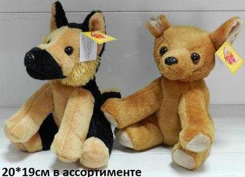 Собака 7-1046-20 сид.