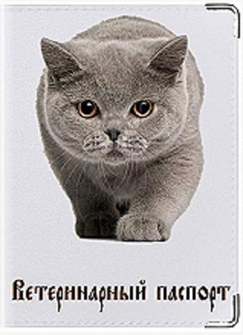 """Обложка для ветеринарного паспорта кошки """"К 2"""""""