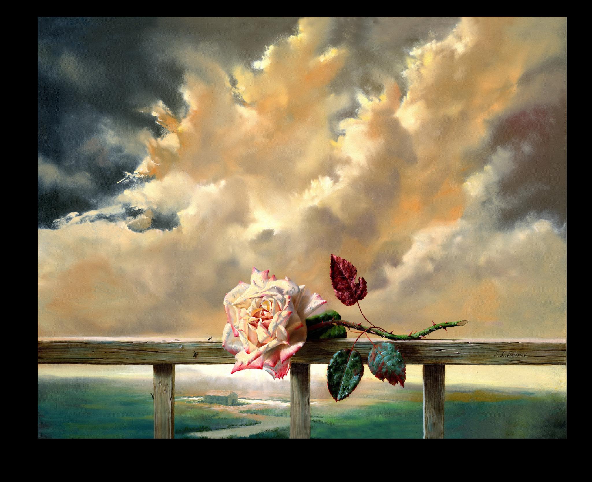 """Постеры Постер """"Живописный бутон розы"""" п205.png"""