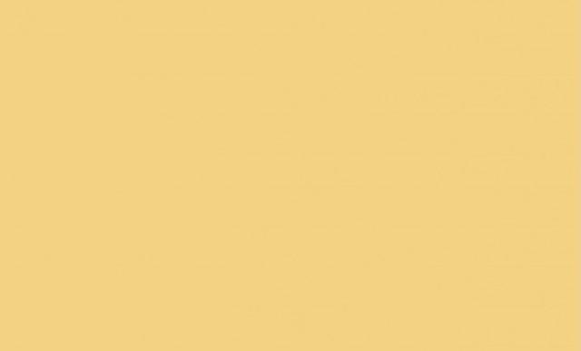 Гладкий лист (в пленке) 1,250 х 2,50м (Ral 1014(Слоновая кость))