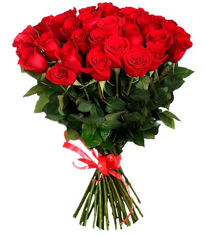 Букет из 51 Голландской красной розы (1 метр)