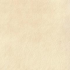 Искусственная кожа Grazie milk (Грация милк)