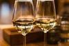 Горизонтальная дегустация вина сорта Совиньон Блан фото