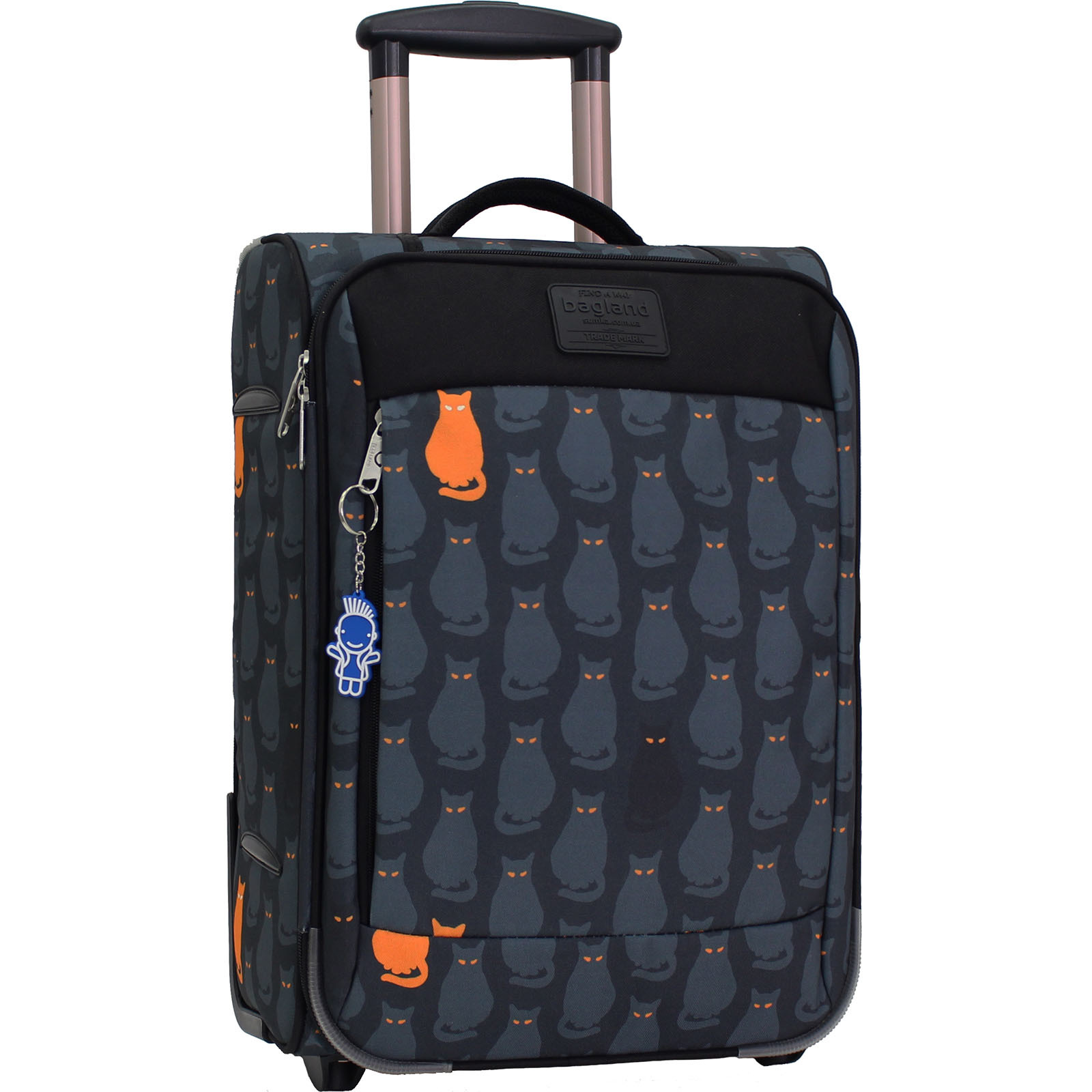Дорожные чемоданы Чемодан Bagland Vichenzo 32 л. сублімація 193 (0037666194) IMG_1384.JPG