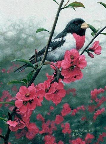 Алмазная Мозаика 30x40 Птица на ветке розовых цветов