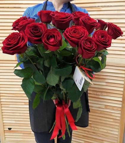 15 красных голландских роз 80 см  #331672
