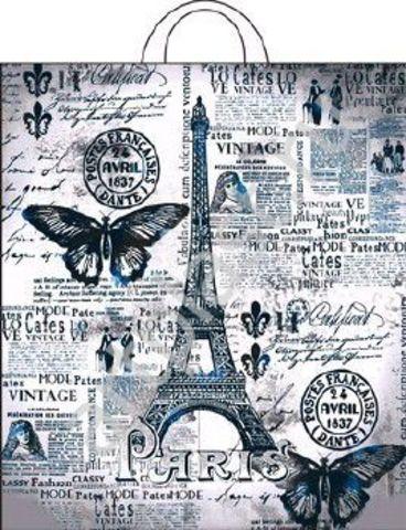 Пакет ПЭ с петлевой ручкой 38х42+6 (50) ПНД Парижский день