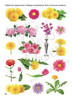 """Рабочий блокнот №5 для детей 2-5 лет """"Фрукты и цветы""""."""