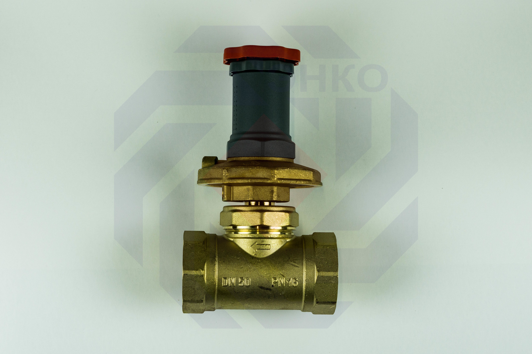 Регулятор перепада давления GIACOMINI R206C DN 50