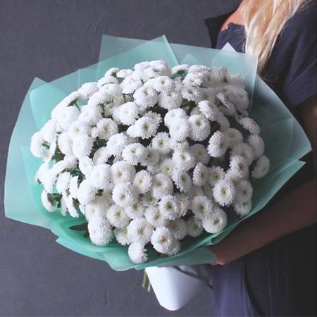 Купить шикарный вип букет 15 кустовых белых помпон хризантем Коконат в Перми