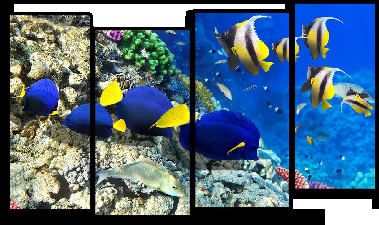 """Природа Модульная картина """"Обитатели под водой"""" М893.png"""