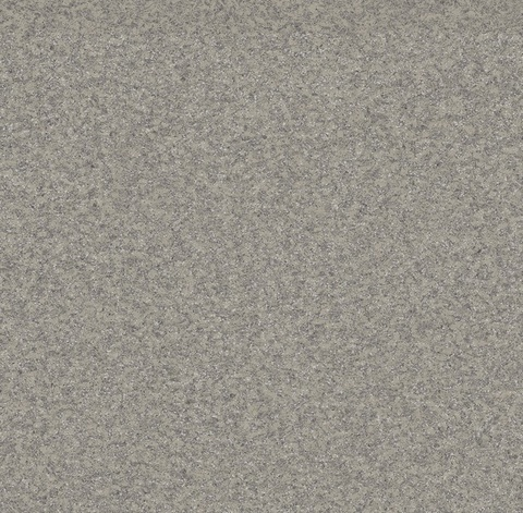 Линолеум Juteks Premium AS Nevada 2 9001