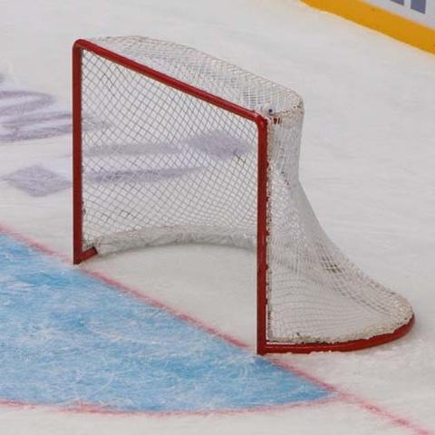 Сетка капроновая для хоккейных ворот