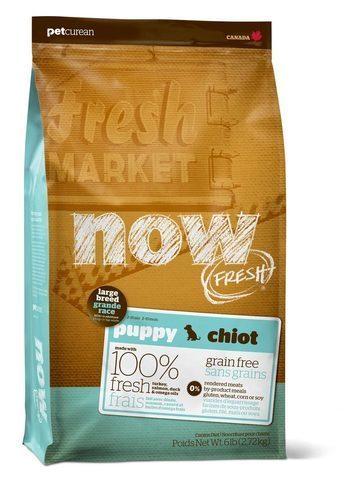 купить Now Fresh puppy large breed recipe Grain Free сухой беззерновой корм для щенков крупных пород с индейкой, уткой и овощами