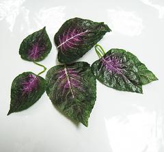 Листья растений двойные, крупные, 6 шт.
