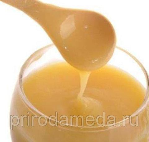 Трутневый гомогенат с мёдом - 300 грамм