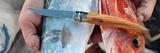 Нож складной филейный Opinel №10 VRI Folding Slim Olivewood в деревянном кейсе и с кожаным чехлом