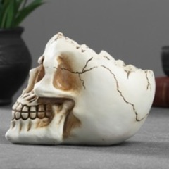 Форма череп