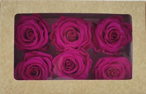 Стабилизированный Бутон Розы Optimum Flowers Standart . Цвет Фуксия (Диаметр 7см)