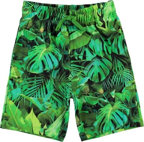 Molo Allwin Jungle Leaves шорты для мальчика
