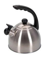 Чайник 1,8л со свистком