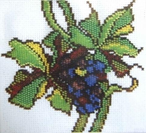 СТ-05 Виноград